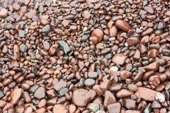 Texture rouge brillante de rivage de roche Photo stock