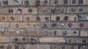 Texture rouge de fond de mur de briques Images stock
