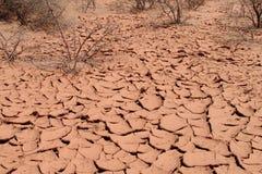 Texture rouge de sol sec de désert Photographie stock