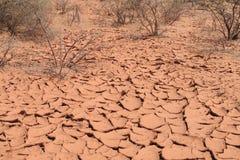 Texture rouge de sol sec de désert Image libre de droits