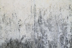 Texture of rough concrete wall Stock Photo