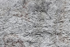 The texture of rough gray cement plaster Royalty Free Stock Photography