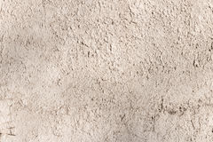 Texture of rough plaster on a sunny day. Royalty Free Stock Photos