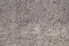 Texture rough plaster walls. Stock Photography