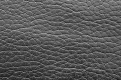Texture rough skin of black color Royalty Free Stock Images