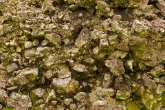 Texture of rough stone Royalty Free Stock Photos