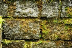 Texture of rough stone Stock Photography
