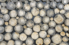 Texture from a round wood. royalty free stock photo