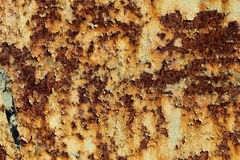 Texture of rusty iron, cracked paint on an old metallic surface, sheet of rusty metal with cracked and flaky paint,  abstract rust Royalty Free Stock Image