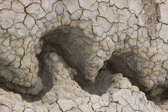 Texture sèche 01 de boue Images stock