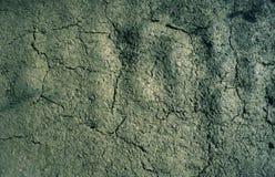 Texture sèche criquée de fond de la terre de boue images libres de droits