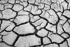 Texture sèche criquée de la terre Images libres de droits