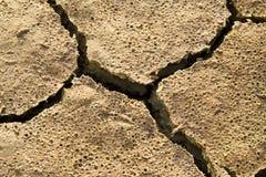Texture sèche de la terre Images stock
