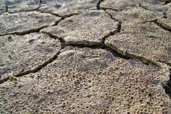 Texture sèche de la terre Photographie stock libre de droits