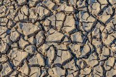 Texture sèche de la terre gris-clair images libres de droits