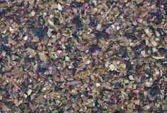 Texture sèche de thé d'Apple et de cannelle Images stock