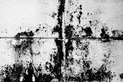 Texture sale de bloc de béton Photographie stock libre de droits