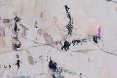 Texture sale repérée de plâtre Photos libres de droits