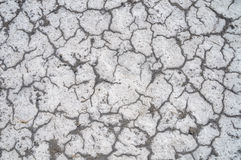 Texture saline soils. Saline soil in the desert Stock Photo