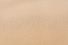 Texture sand Stock Images