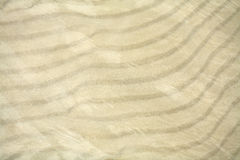 Texture of the sand Stock Photography