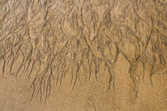 Texture of sand Stock Photography