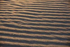 Texture of sand. Close up view beach sand background Royalty Free Stock Photography