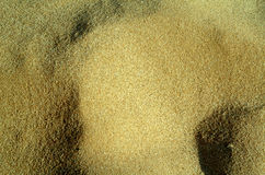 Texture sand beach Stock Images