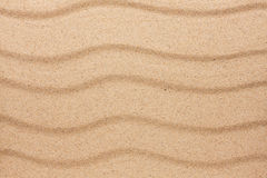 Texture of sand in the desert Stock Images