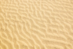 The texture of the sand dunes. Stock Photos
