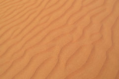 The texture of the sand. Fancy wavy patterns in the sand Stock Image