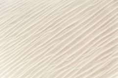 Off white sand texture on the beach in the Oman. A texture of the sand royalty free stock images