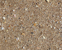 Texture sand with seashells. Stock Image
