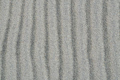 Texture of the sand Stock Image