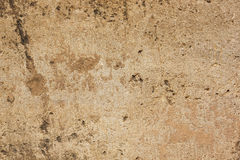 Texture of sandstone Stock Image