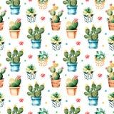 Texture sans couture d'aquarelle avec l'usine de cactus et l'usine succulente dans le pot Photo libre de droits