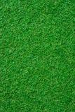 Texture sans couture d'herbe verte Photo libre de droits