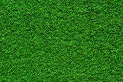 Texture sans couture d'herbe verte Photos libres de droits