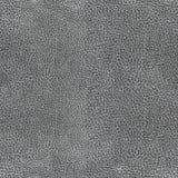 Texture sans couture de cuir gris bronzée Photos stock