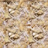 Texture sans couture de photo des flocons d'avoine photographie stock libre de droits