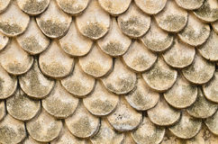 Texture sans couture de sable Photos stock