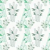Texture sans couture de vecteur avec le bambou vert Images libres de droits