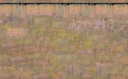 Texture sans couture du mur pour le fond Photo libre de droits