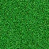 Texture sans couture. Herbe de pré verte. image stock