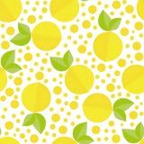 Texture sans couture tirée par la main avec les éléments et les citrons floraux Fond de vecteur Image libre de droits