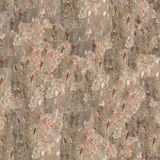 Texture sans joint d'écorce d'arbre Photos stock