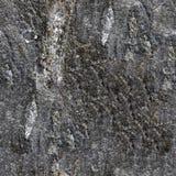 Texture sans joint de granit Image stock