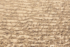 Texture of sea sand Stock Image