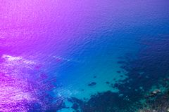 The texture of the sea surface of neon color. Trend of the year. royalty free stock photo