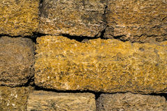 Texture of seashell bricks Royalty Free Stock Images